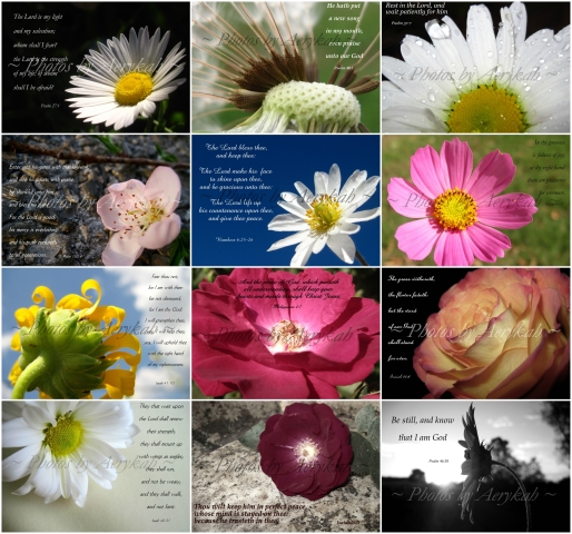 2013 Calendar Collage